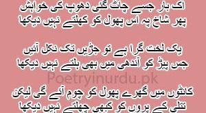 Bichra Hai Jo Ek Bar To Milty Nahin Dekha